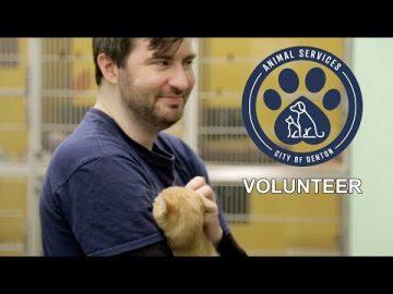 """Happiness"" Volunteer at the Linda McNatt Animal Care & Adoption Center"